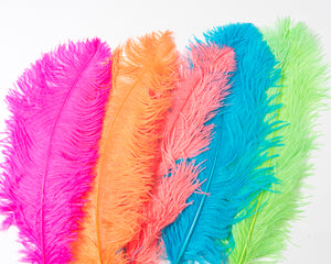 All Ostrich Wing Plume Feathers 20-25 inches by the Piece (CHOOSE YOUR COLOR)
