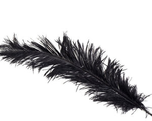Black Ostrich  Spad Feathers 20 inches and up by the Piece