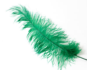 Emerald Ostrich  Spad Feathers 20 inches and up by the Piece