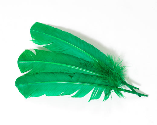 Emerald Quill Feathers by the Pound