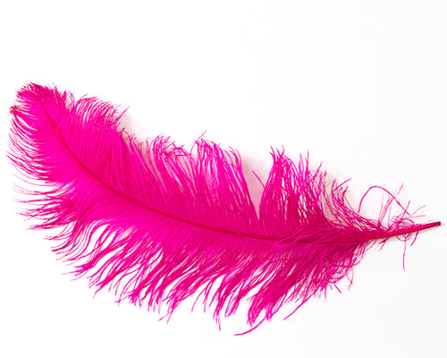 Hot PInk Ostrich Feather 20 inches and up by the Piece