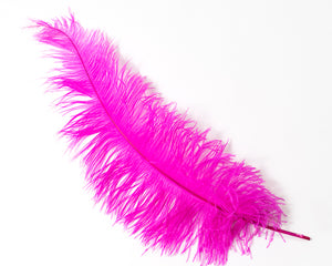 Hot PInk Ostrich  Spad Feathers 20 inches and up by the Piece