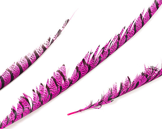Hot Pink Pheasant Feathers 30 inches up, per 5 pieces