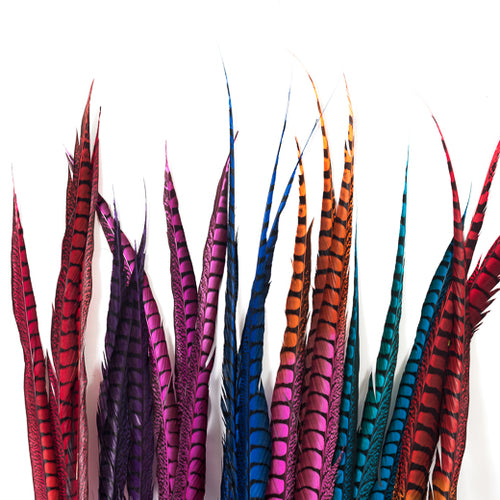 Lady Amherst Pheasant Feathers, Dyed Over Natural, 30-36 inch, by the piece (CHOOSE YOUR COLOR)