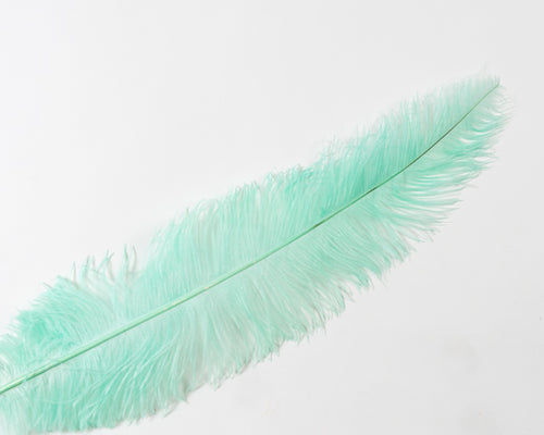 Mint Ostrich  Spad Feathers 20 inches and up by the Piece