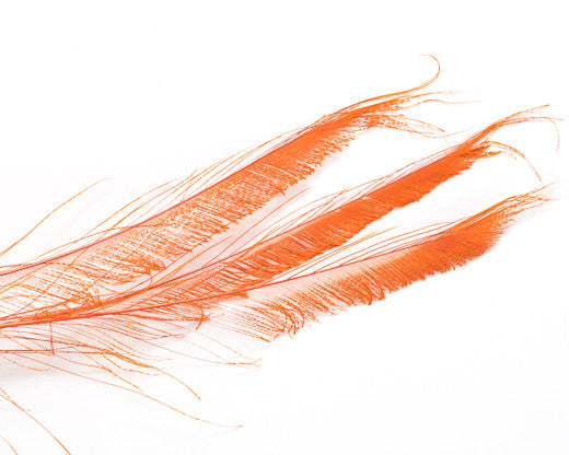 Orange Bleached and Dyed Peacock Swords 25-35 inches 100 Pack
