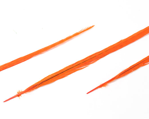 Orange Ringneck Pheasant Feather Bleached and Dyed 22 inches and up, per 10 pack