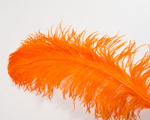 All Ostrich Wing Plume Feathers 20 inches and up by the Piece (CHOOSE YOUR COLOR)