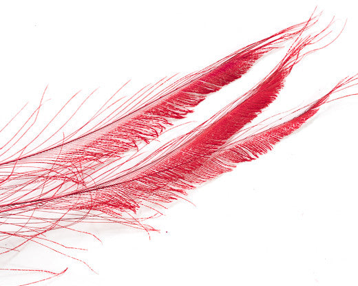 Red Bleached and Dyed Peacock Swords 25-35 inches 100 Pack