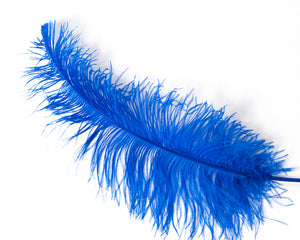 Royal Ostrich  Spad Feathers 20 inches and up by the Piece