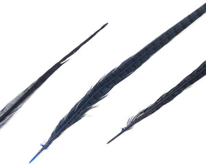 Dyed Over Natural Ringneck Pheasant Feathers 22 inches and up by the Piece (CHOOSE YOUR COLOR)