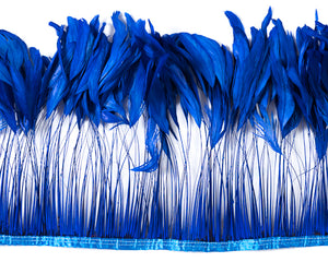 Royal Stripped Cocktail Feathers 8-10 inches by the Yard