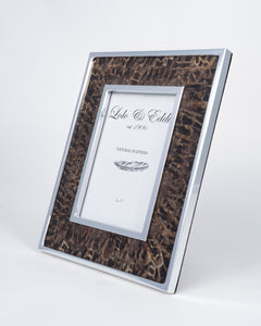 Pheasant Feather and Glass Picture Frame