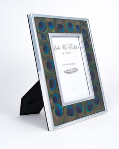 Peacock Eye Feather and Glass Picture Frame