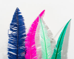 All Ostrich Nando Feathers 20 inches and up by the Piece (CHOOSE YOUR COLOR)