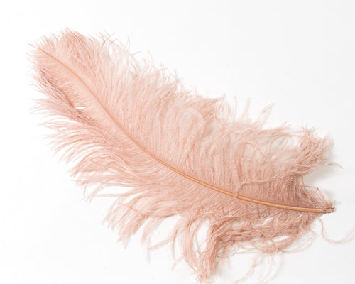 Tan Ostrich  Spad Feathers 20 inches and up by the Piece
