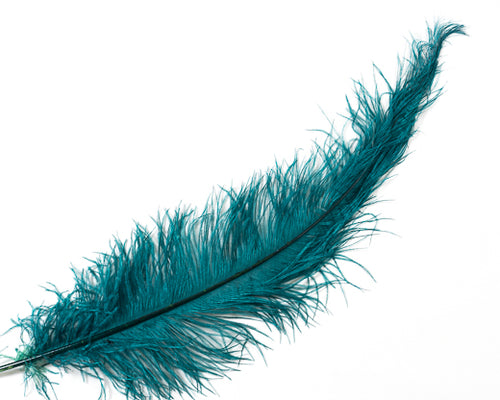 Teal Ostrich  Spad Feathers 20 inches and up by the Piece