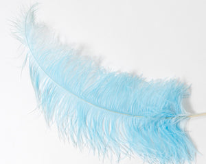 Aqua Ostrich  Spad Feathers 20 inches and up by the Piece