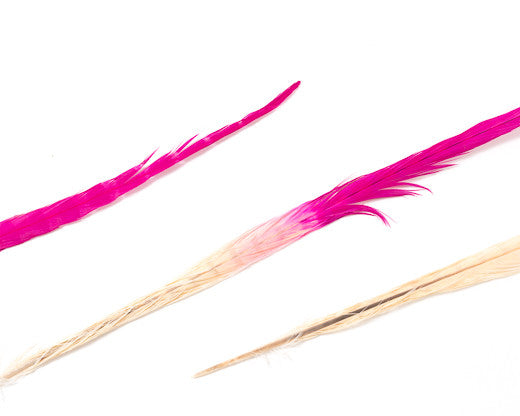 Beige and Hot Pink Ringneck Pheasant Feather Bleached and Dyed 22 inches and up, per 10 pack