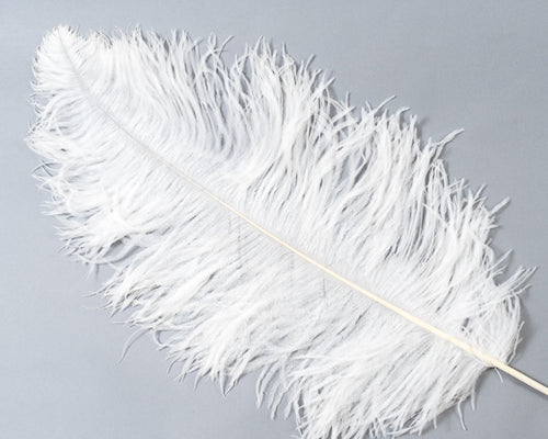 White Ostrich Feather 20 inches and up by the Piece