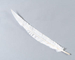 White Ostrich Nando Feathers 20 inches and up by the Piece