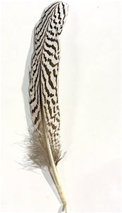 Quills - Short Pheasants, Dyed and Natural, 4-9 inches, per pack of 10