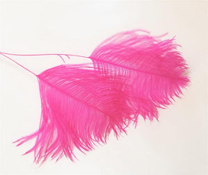 Ostrich Plume Tips, 28 inches long, pack of 6