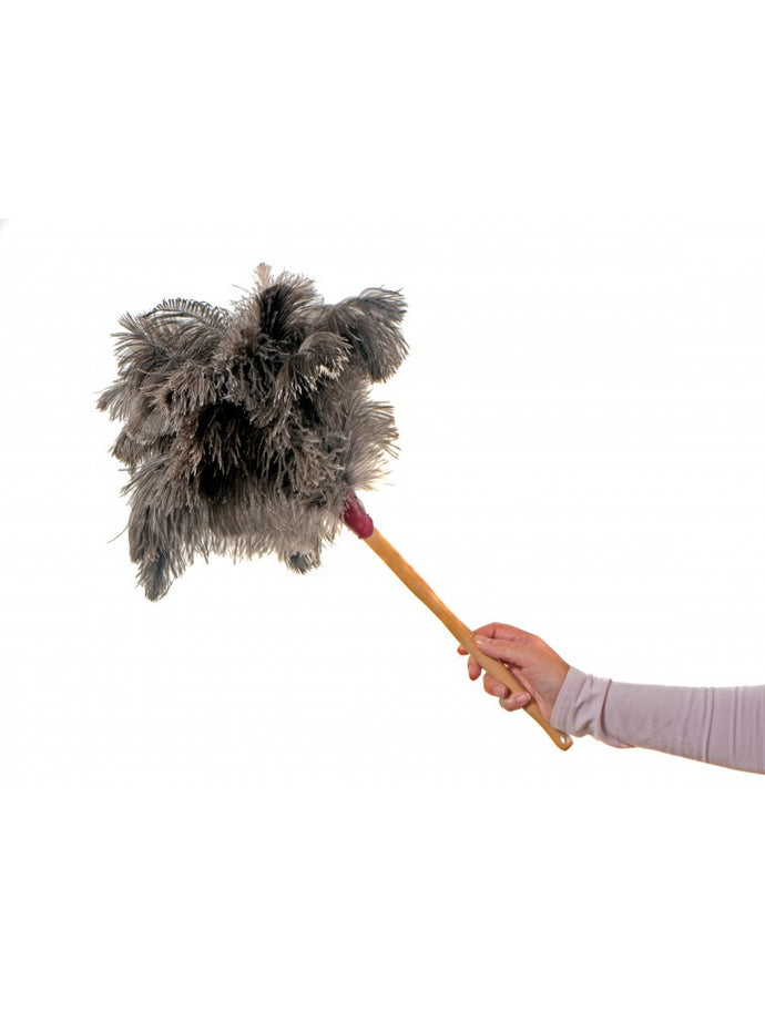 Feather Duster, 14