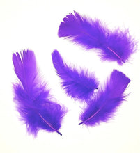 Turkey Plumage, Dyed T-Base per Ounce (CHOOSE YOUR COLOR)