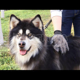 Boomy's Pet Shedding Grooming Glove (One Pair)