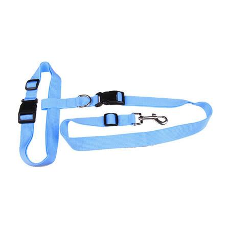 New! Waist Dog Leash