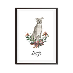 Grey American Staffordshire Terrier Watercolour Dog Print - Mode Prints