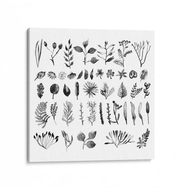 Black And White Watercolour Leaves Canvas Art Print