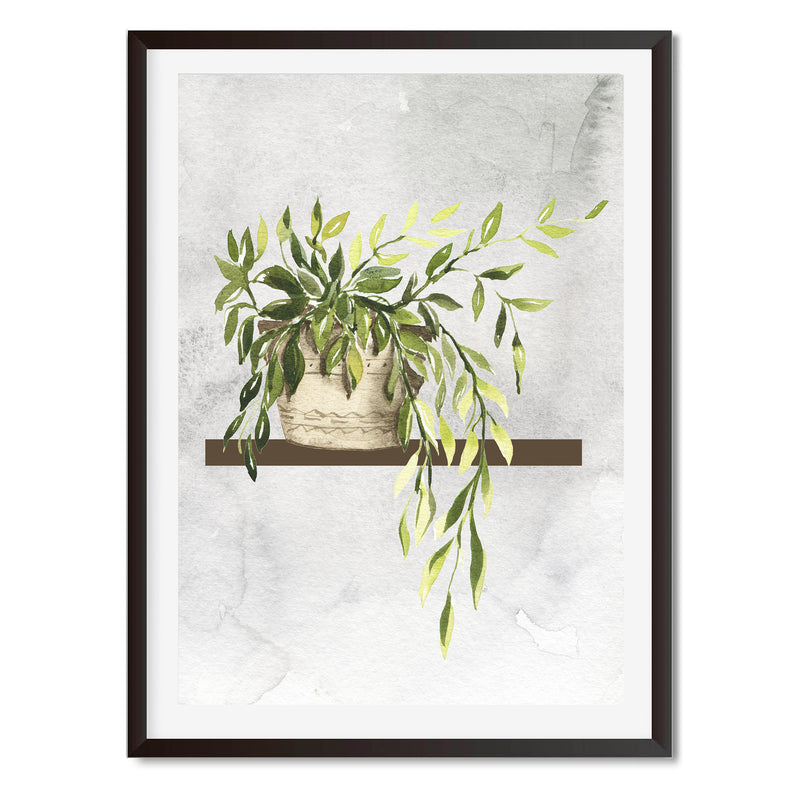 Watercolour Indoor Climbing House Plant Wall Art Print