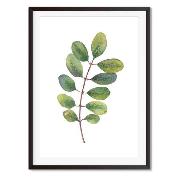 Watercolour Leaf Stem Wall Art Print