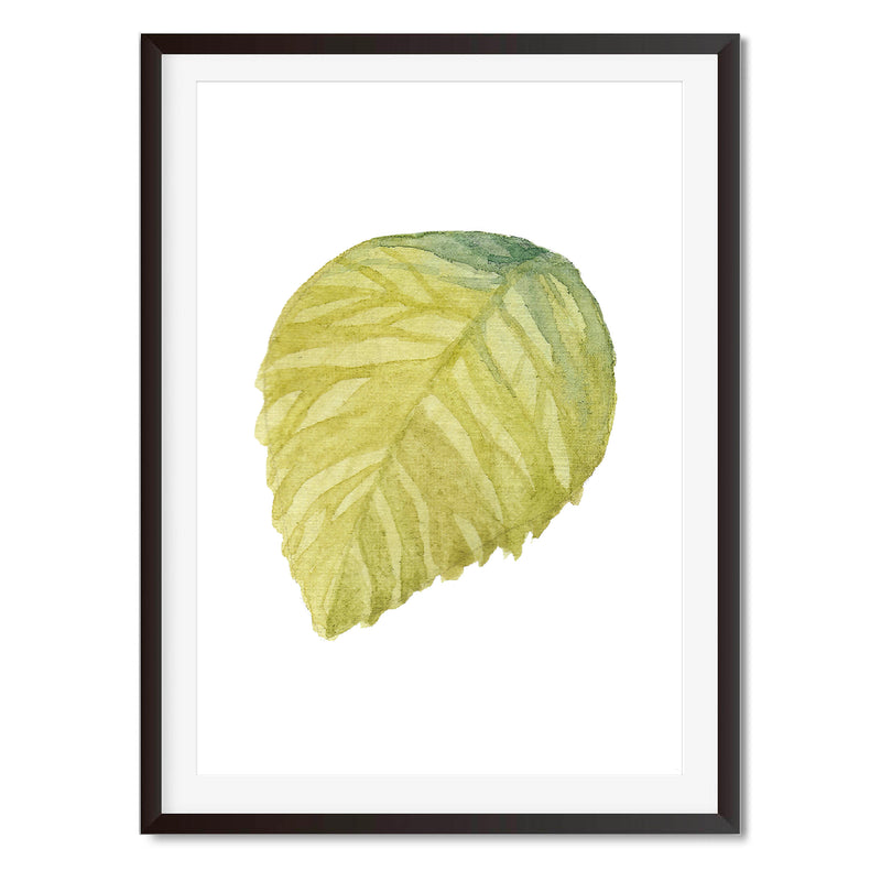 Watercolour Leaf Green Wall Art Print