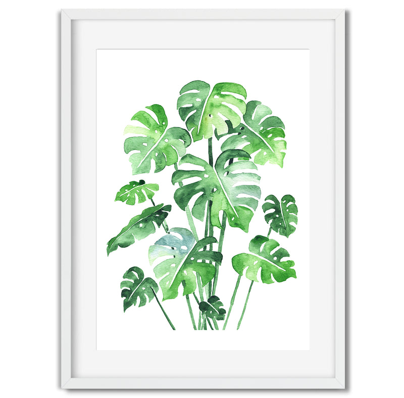 Watercolour Monstera Deliciosa Leaf Wall Art Print