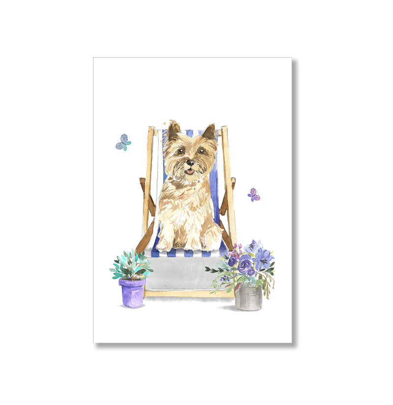 Cairn Terrier Dog In Deck Chair Wall Art Print - Mode Prints