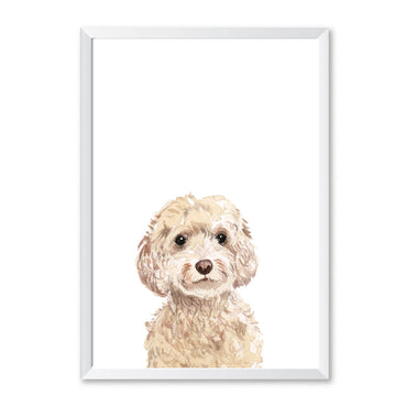 Cockapoo Dog Peekaboo Print-Print-Mode Prints