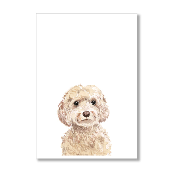 Cockapoo Dog Peekaboo Print - Mode Prints