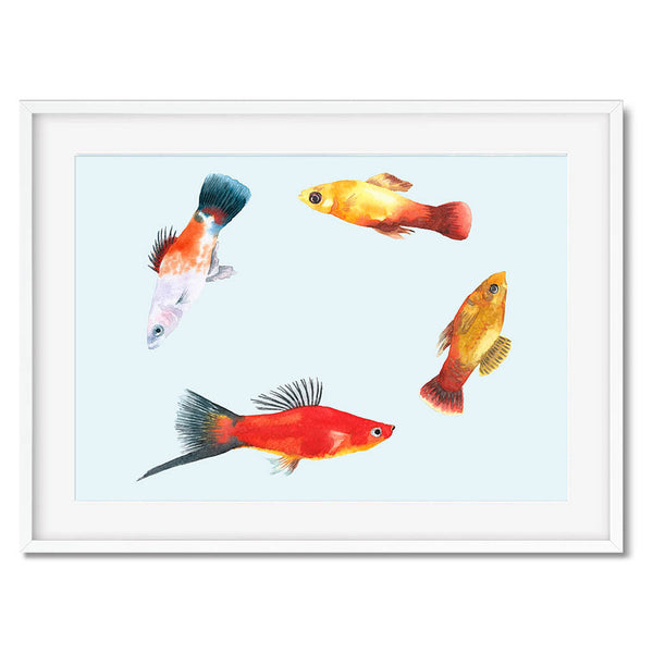 Japanese Koi Fish Print