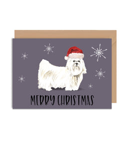 Maltese Dog Christmas Greeting Card