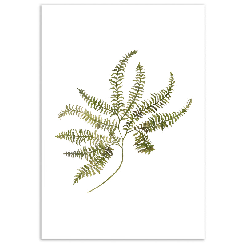 Watercolour Herbaceous Wall Art Print