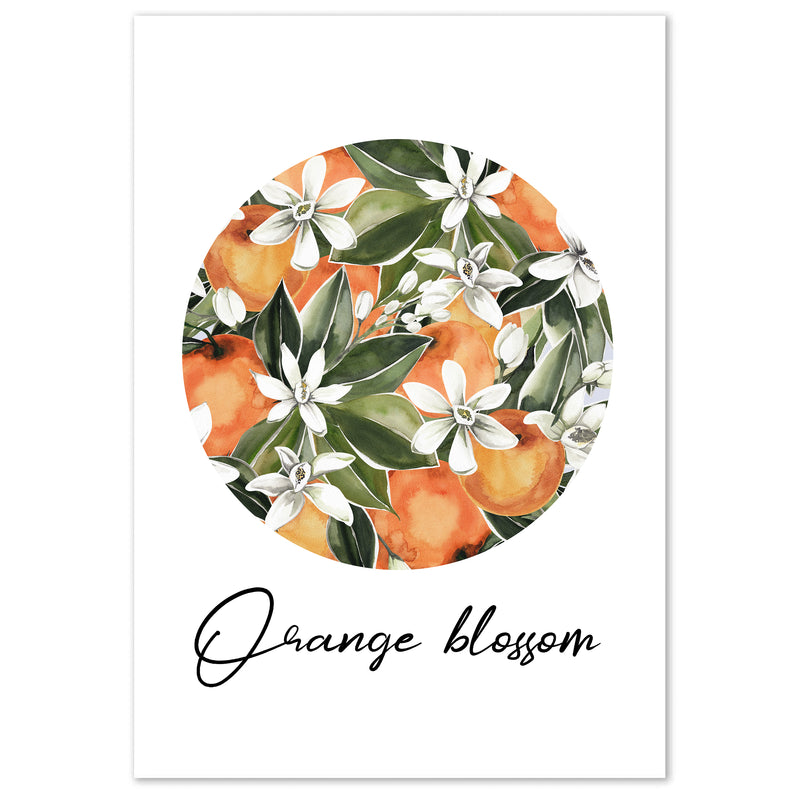 Botanical Orange Blossom Wall Art Print - Mode Prints