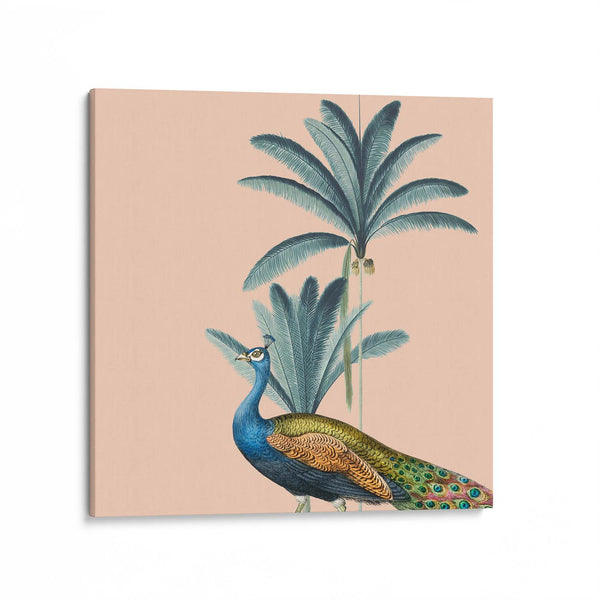 Tropical Jungle Peacock Canvas Art Print
