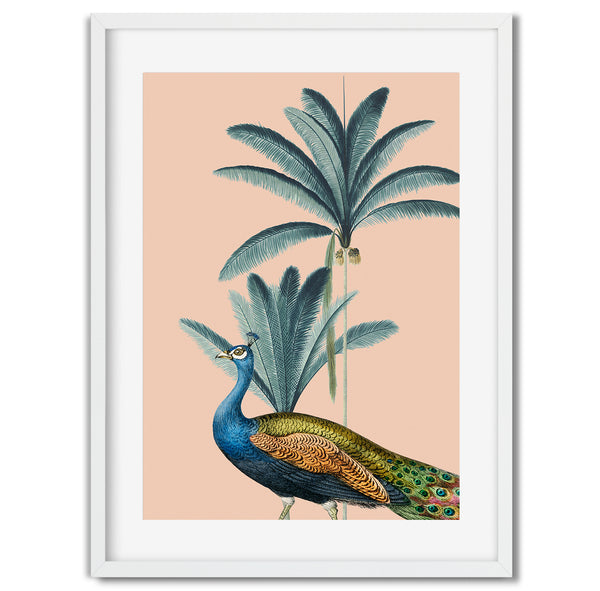 Tropical Jungle Peacock Wall Art Print - Mode Prints