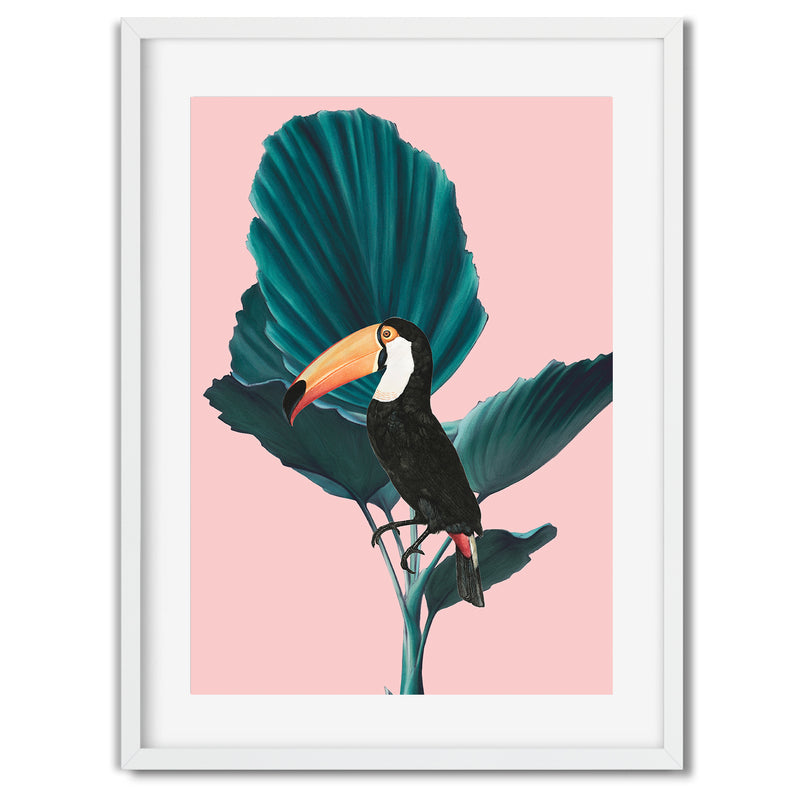 Tropical Jungle Toucan Wall Art Print - Mode Prints