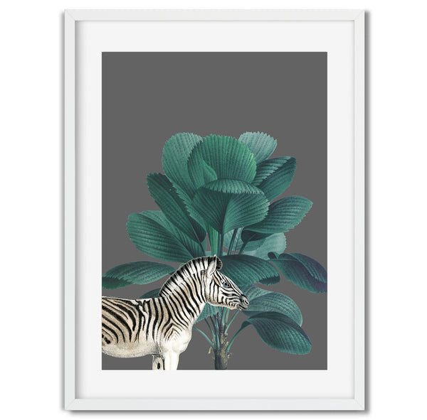 Tropical Jungle Zebra Wall Art Print - Mode Prints