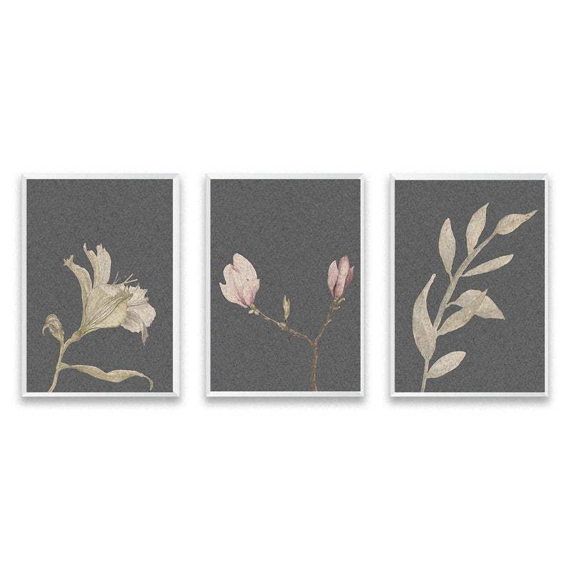 Set Of Three Vintage Botanical Poster Prints - Mode Prints