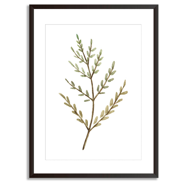 Watercolour Leaves Wall Art Print